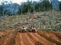 Rodung des Regenwaldes in Ecuador, 1997