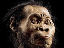 Homo naledi ist ein neuer Verwandter des modernen Menschen
