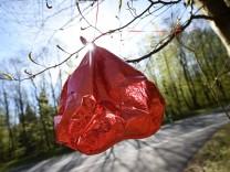 Herzballon im Baum