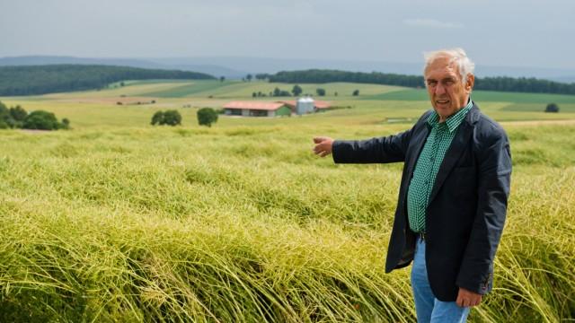 Dorf lockt Neubürger mit Gratis-Grundstücken