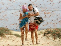Tourists run through a swarm of locusts in Spain's Canary Islands