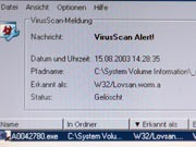 Virus, dpa