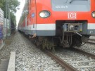151018_238_Baum im Gleis S-Bahn