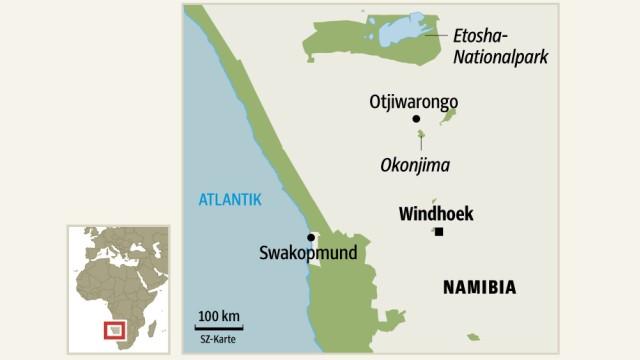 Namibia Raubkatzen in Namibia