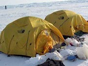 Abenteuer Arktis (15)
