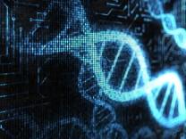 Helix Gene