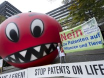 """Entscheidung über Patent auf ´Schrumpeltomate"""""""