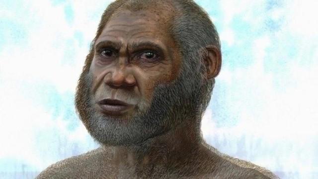 Anthropologie Anthropologie