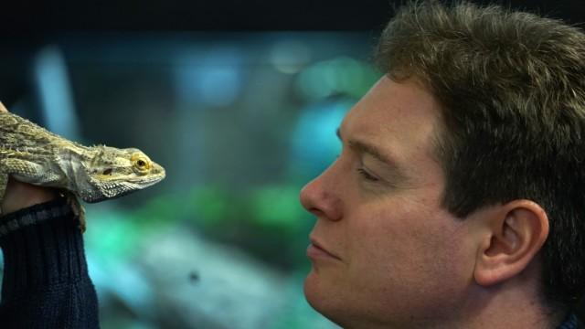 Reptilien Fehlende Gelder