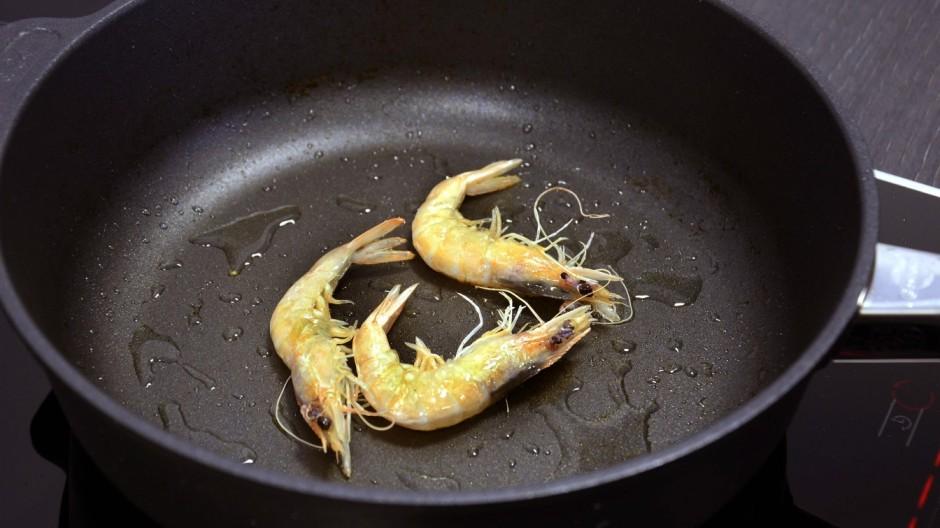 Langenpreising Shrimps-Zucht in Langenpreising