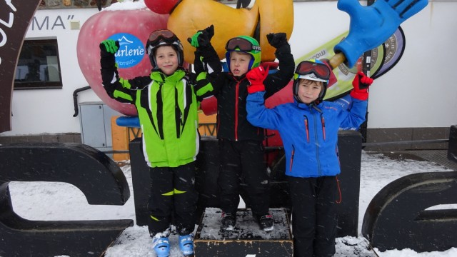 Ski Skigebiete in den Alpen