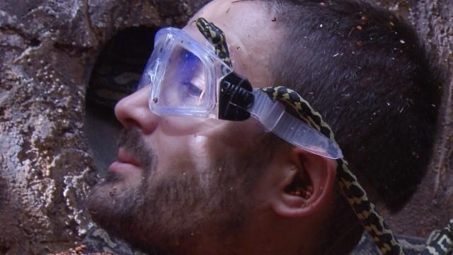 Ich bin ein Star - Holt mich hier raus!; RTL-Dschungelcamp, Dschungelkönig Menderes Bagci