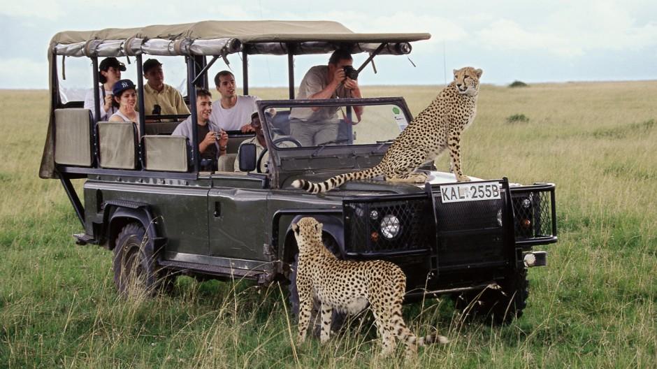 """Rückkehr des ´vergessenen"""" Kontinents: Immer mehr Reisen nach Afrika"""