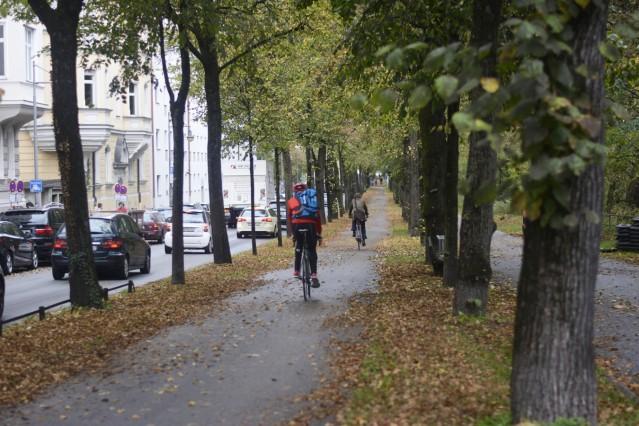 Herbstlicher Radweg