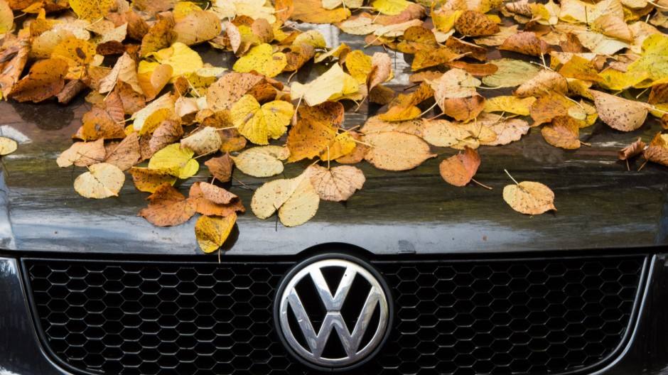 VW im Herbst