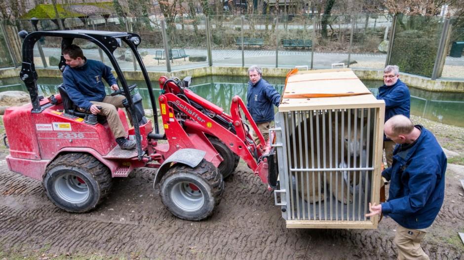 Tierpark Hellabrunn Tierpark Hellabrunn