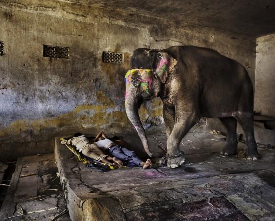 Indien, 105 Rajasthan