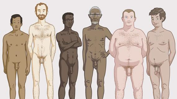 Zanzu.be, Körperformen bei Männern
