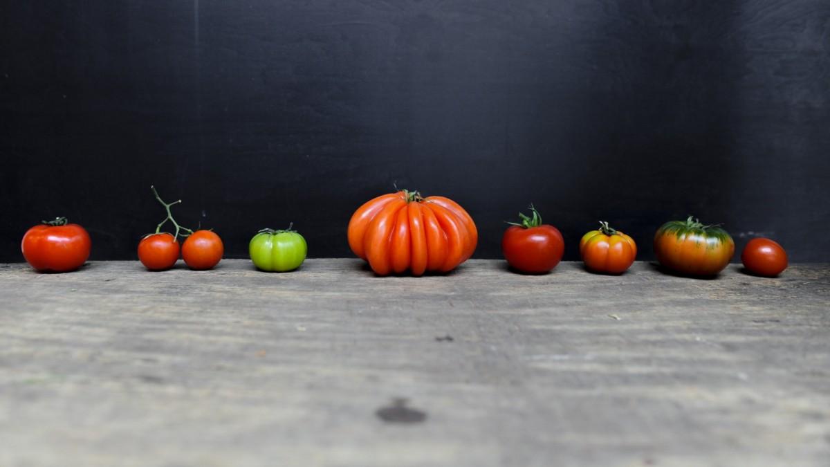 Essen: Tomatensoße
