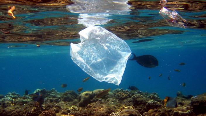 Plastiktüte im Meer