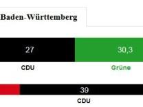Landtagswahl Grafik