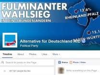AfD Facebook