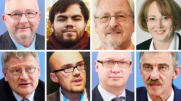 AfD AfDler in den Landtagen