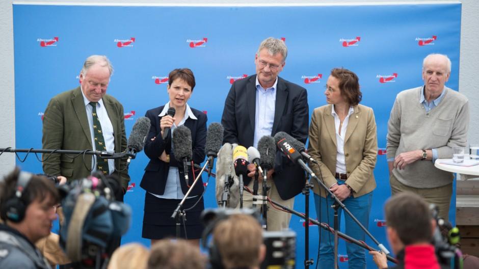 Pressekonferenz des neuen AfD-Bundesvorstands