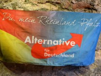 AfD in Rheinland-Pfalz