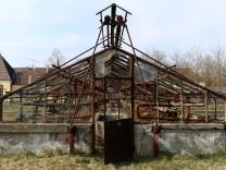 Ehemaliger Kräutergarten aus der NS-Zeit in Dachau, 2015
