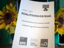 Landesparteitag Grüne - Sachsen-Anhalt