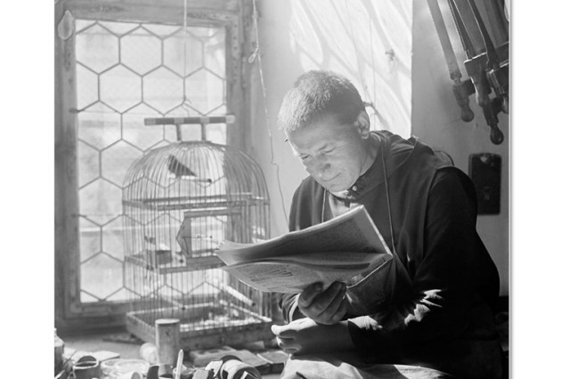 Julius Guggenheimer Fotografien