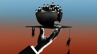 Studium Hochschulreform