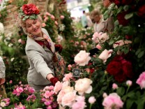 The 2016 Chelsea Flower Show Opens To The Public