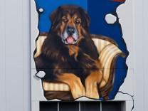 Reischl Selfstorage - Graffiti Gestaltung der Fassaden