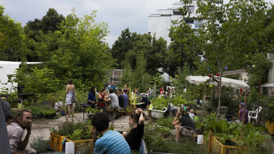 Urban Gardening Growing In Popularity