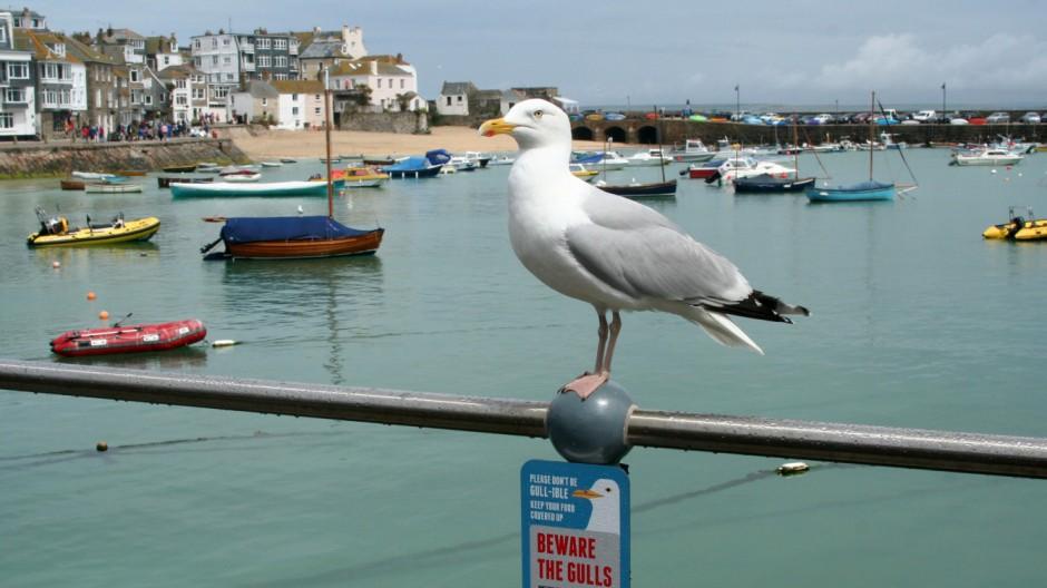 Cornwall Cornwall