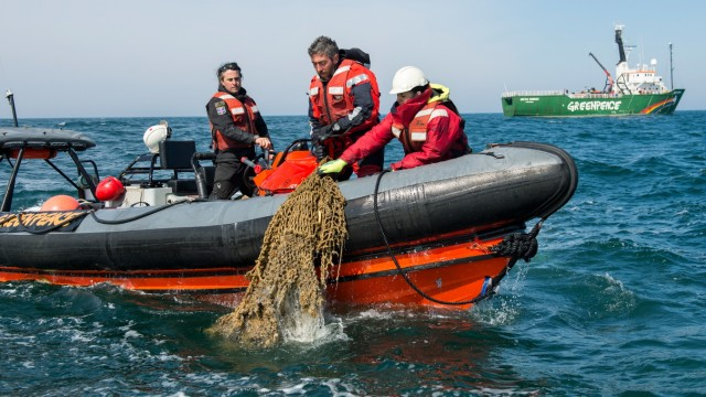 Ghostnets recovering in the North Sea Sanctuary Greenpeace birgt Netze im Sylter Aussenriff