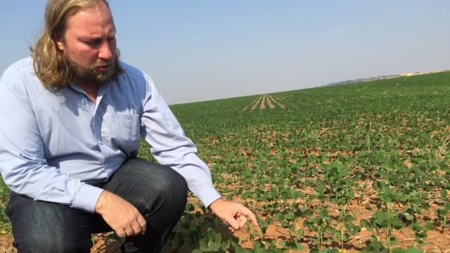 Anton Hofreiter besichtigt Sojaplantage