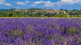 Region Sault, Provence Frankreich - Pressematerial für die Reise