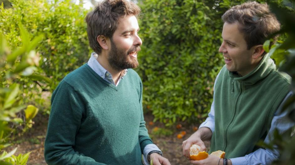 Süddeutsche Zeitung Wirtschaft Orangen-Anbau in Spanien