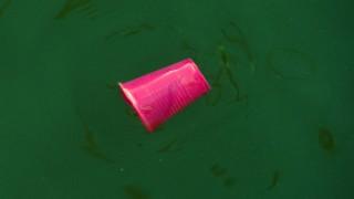 Plastikbecher im Meer