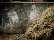 Rottbach: Misthaufen auf Bauernhof
