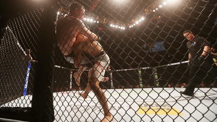 UFC Fight Night: Overeem v Arlovski