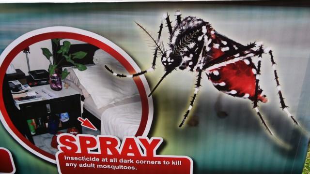Zika-Virus Seuchen