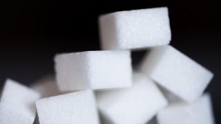 Zucker