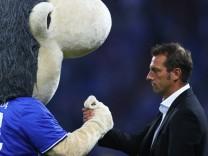 FC Schalke 04 v 1. FC Koeln - Bundesliga