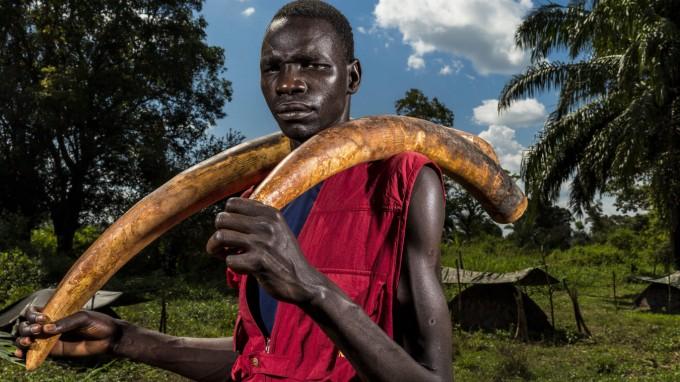 Mit Elfenbein lassen sich immense Gewinne erzielen, etwa im Südsudan. (Foto: Brent Stirton/dpa)