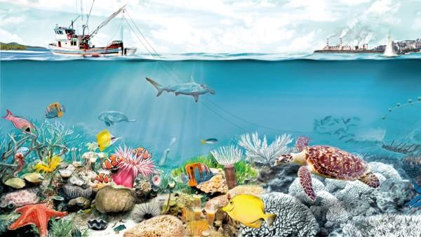 Korallengrafiik