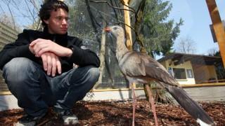 Olching: Vogelpark